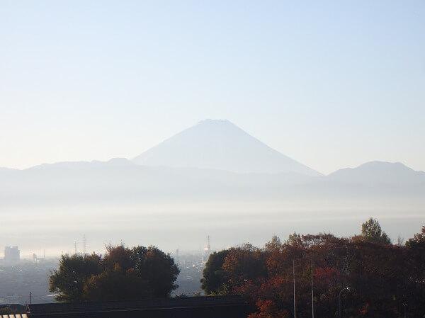 双葉SA 富士山 眺め